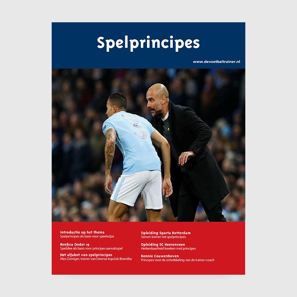 E-book spelprincipes